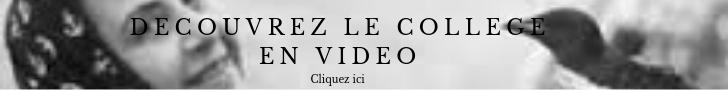 Video du collège